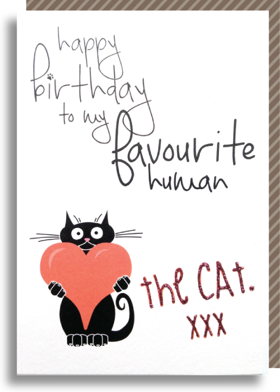 Happy Birthday From The Cat Pickled Cat Greeting Card Publisher